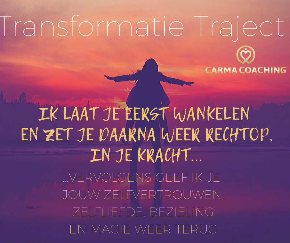 Transformatietrajectaanknieuw
